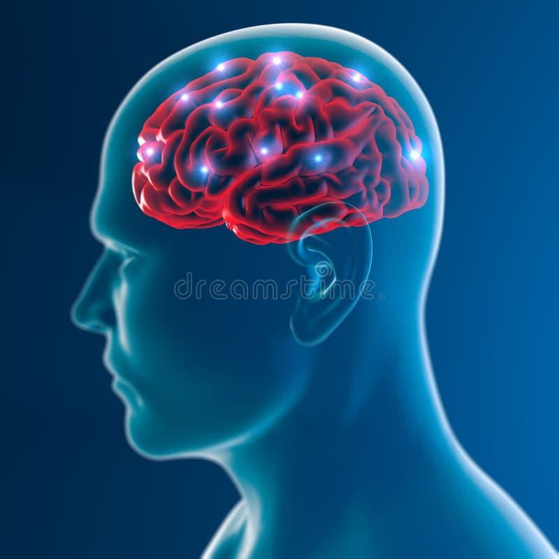 Funzioni della sinapsi dei neuroni del cervello royalty illustrazione gratis