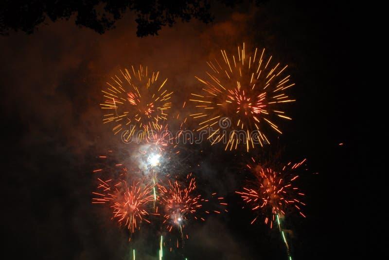 Fuochi d'artificio 1 immagine stock