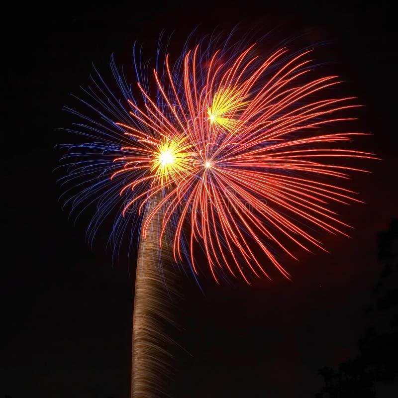 Download Fuochi d'artificio fotografia stock. Immagine di asta, colori - 203270