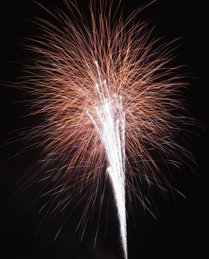 Fuochi d'artificio alla notte. fotografie stock libere da diritti
