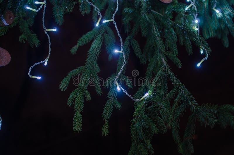 Fuochi d'artificio allo spazio della copia e del nuovo anno - fondo astratto di festa fotografia stock libera da diritti