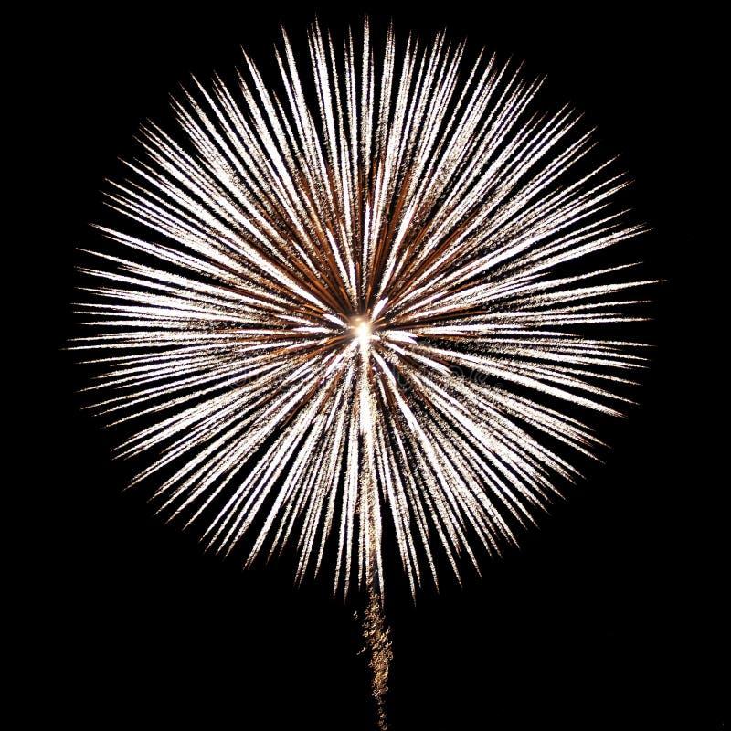 Fuochi d'artificio bianchi fotografia stock libera da diritti