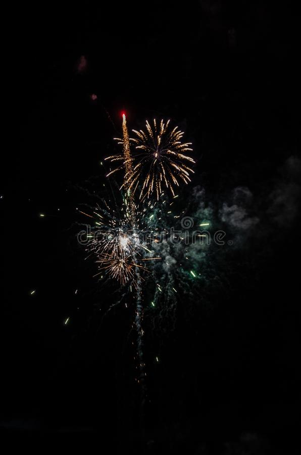 Fuochi d'artificio che assomigliano ad un fiore immagine stock libera da diritti