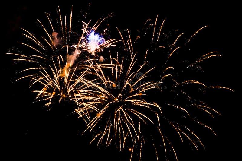 Fuochi d'artificio che esplodono durante il quarto luglio a Grand Rapids Michigan immagini stock libere da diritti