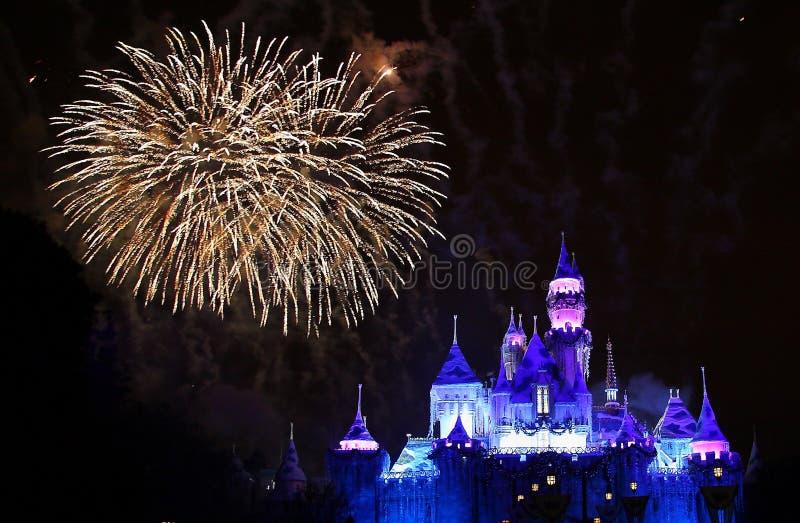 Fuochi d'artificio del Disneyland fotografia stock libera da diritti