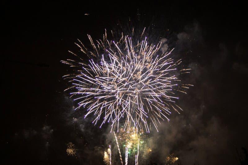 Fuochi d'artificio di festa nazionale immagini stock