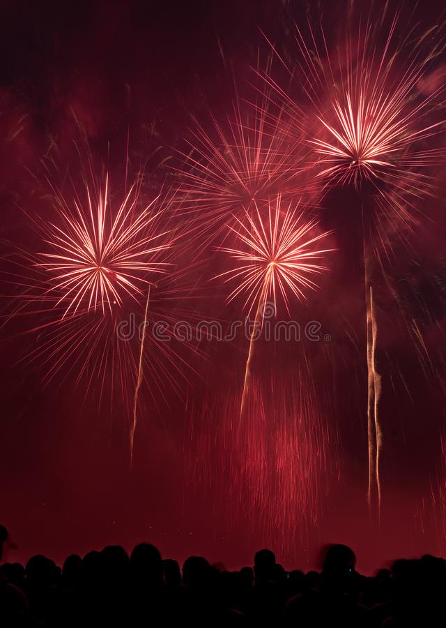 Fuochi d'artificio di sorveglianza della gente in cielo notturno immagini stock
