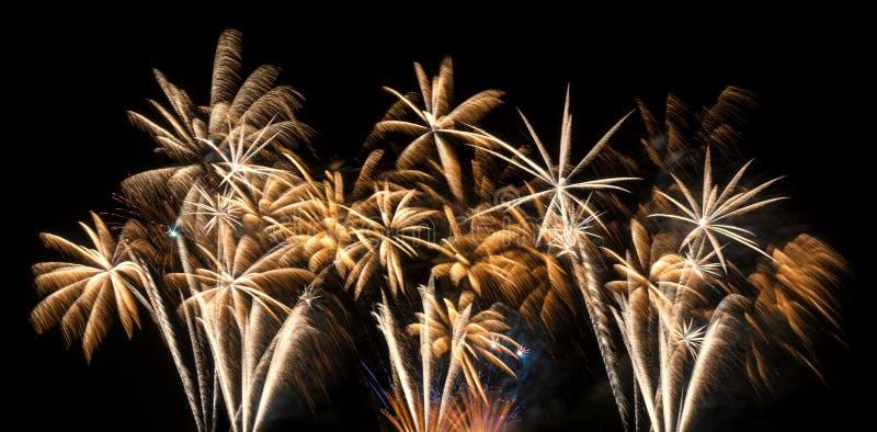 Fuochi d'artificio dorati immagini stock libere da diritti
