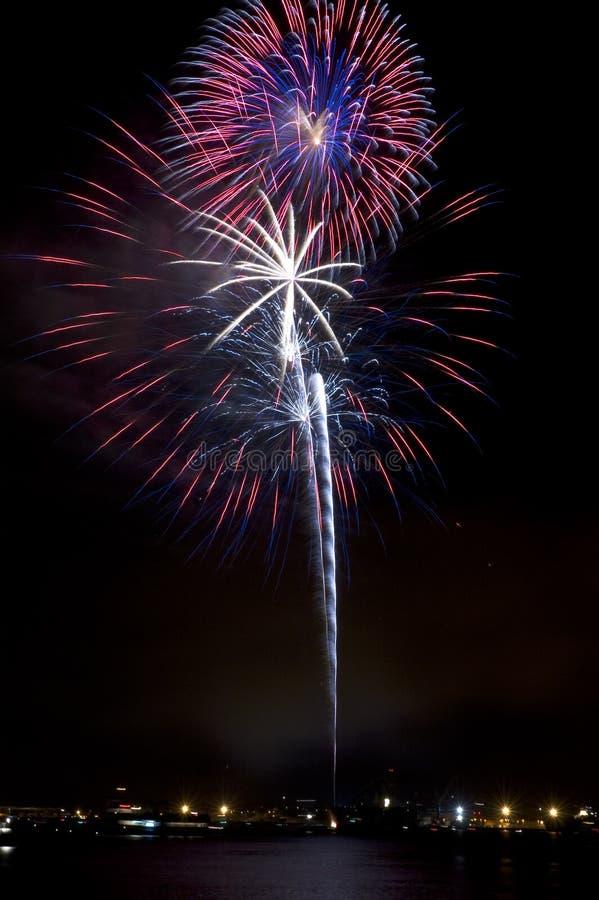 Fuochi d'artificio elettrici delle fioriture immagini stock