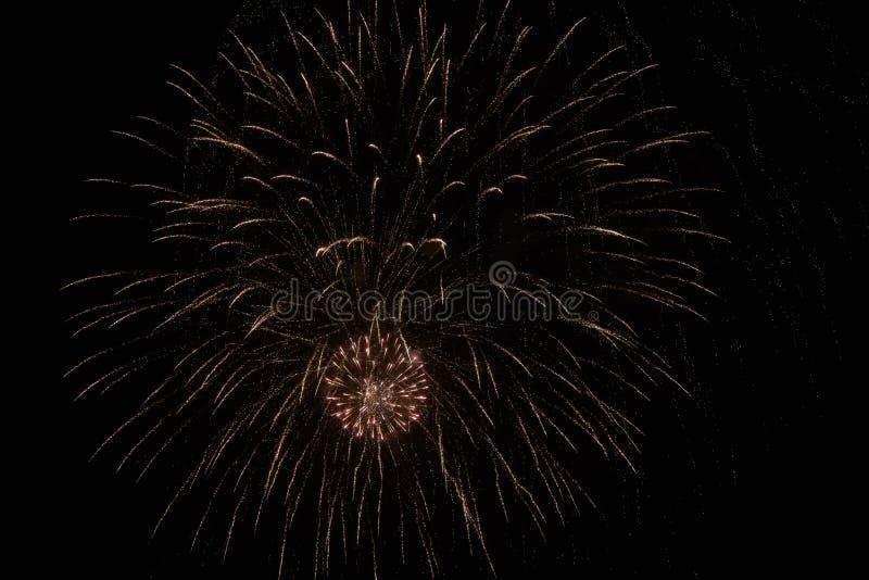 Fuochi d'artificio festivi nel cielo scuro fotografia stock