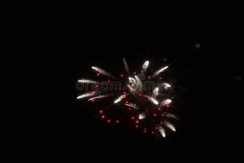 Fuochi d'artificio festivi nel cielo scuro immagine stock libera da diritti
