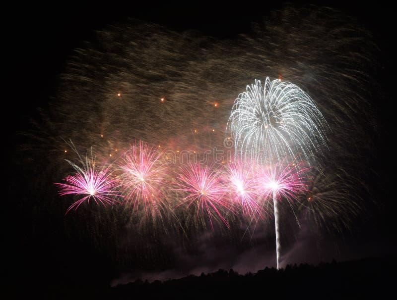 Fuochi d'artificio II immagine stock libera da diritti