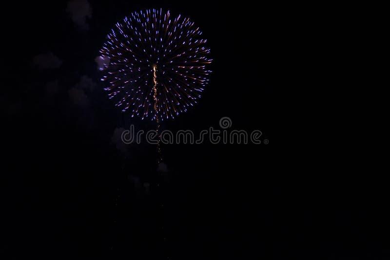 Fuochi d'artificio multipli in cielo notturno in una composizione in tonalità blu immagine stock