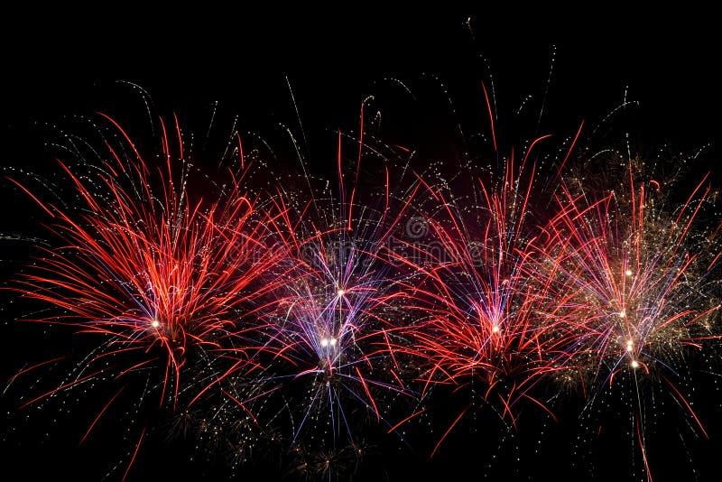 Fuochi d'artificio sopra il cielo nero immagine stock libera da diritti