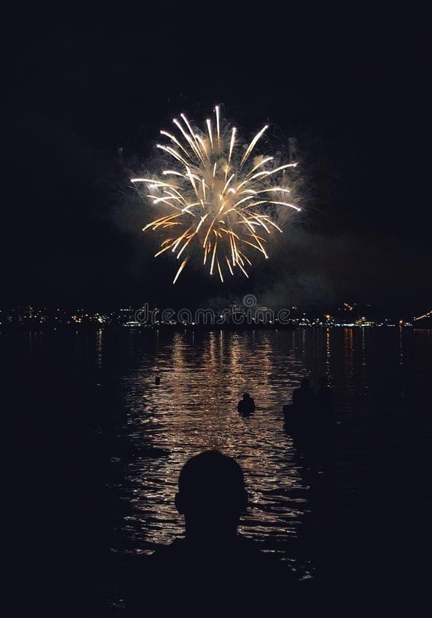 Fuochi d'artificio sopra lo stagno alla notte fotografie stock libere da diritti