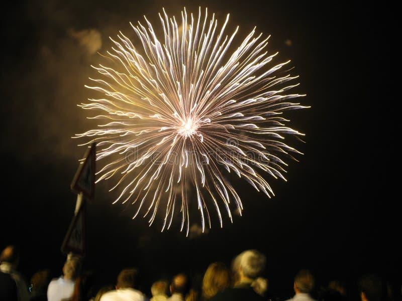 Fuochi d'artificio stupefacenti immagine stock libera da diritti
