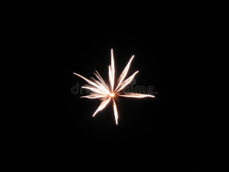 Fuochi d'artificio stupefacenti fotografia stock libera da diritti