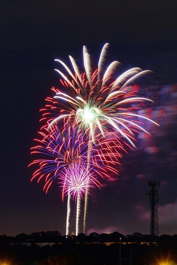Fuochi d'artificio a Tampa fotografia stock libera da diritti