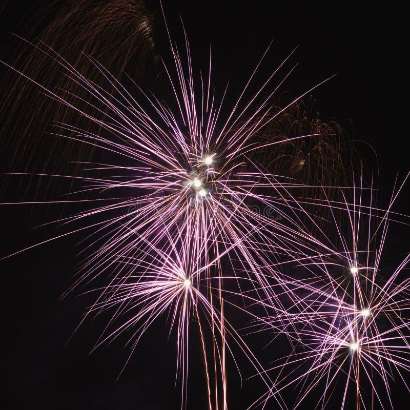 Fuochi d'artificio variopinti alla notte. immagini stock