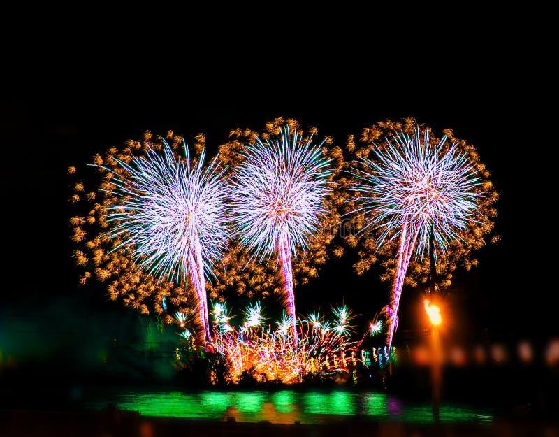 Fuochi d'artificio variopinti con gli scoppi multipli contro il cielo scuro immagini stock libere da diritti