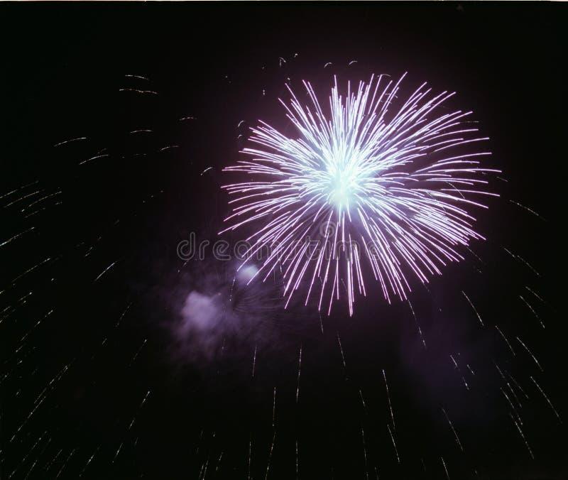 Fuochi d'artificio viola fotografia stock