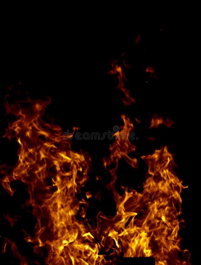 Download Fuoco immagine stock. Immagine di campfire, luce, disegno - 7302251