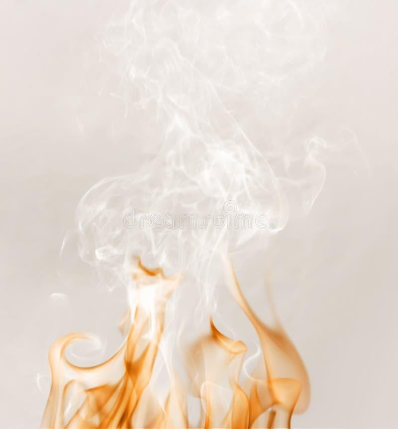 Fuoco con un fumo bianco fotografia stock