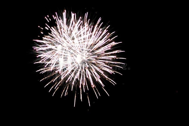 Fuoco d'artificio bianco che esplode a Grand Rapids Michigan fotografia stock