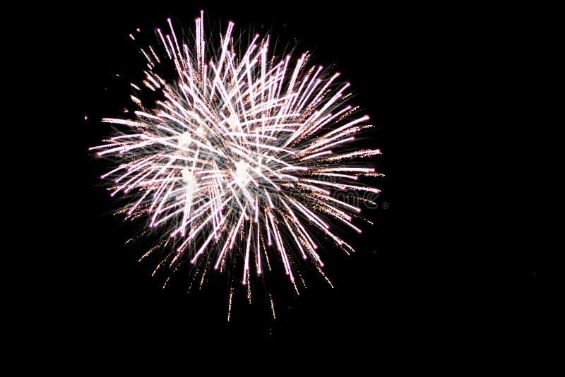 Fuoco d'artificio bianco che esplode a Grand Rapids Michigan fotografia stock libera da diritti