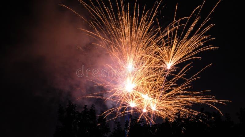 Fuoco d'artificio dietro la siluetta degli alberi immagini stock
