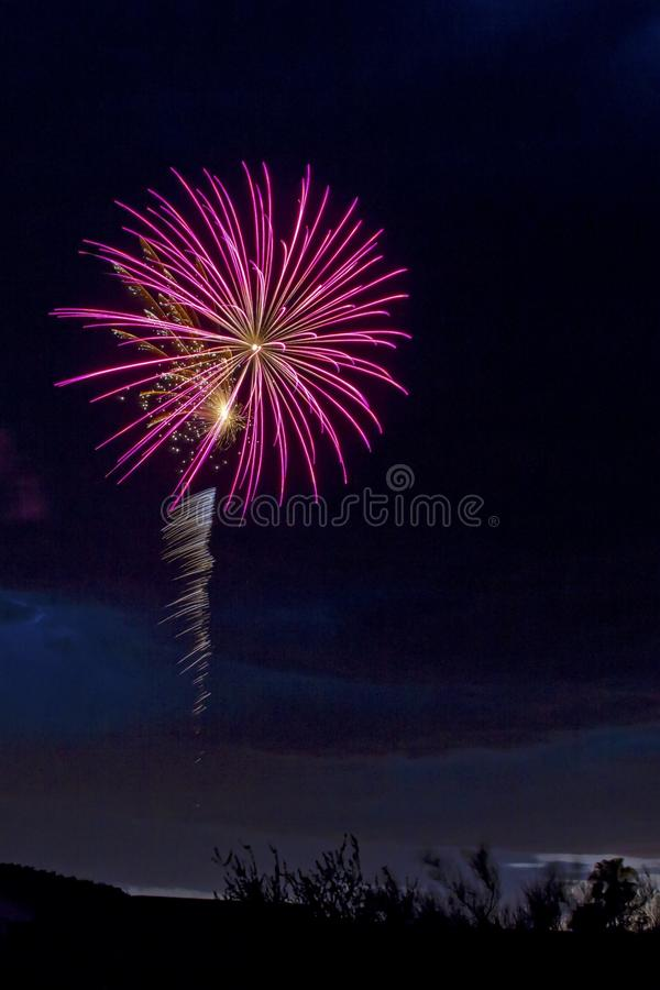 Fuoco d'artificio rosa immagini stock libere da diritti