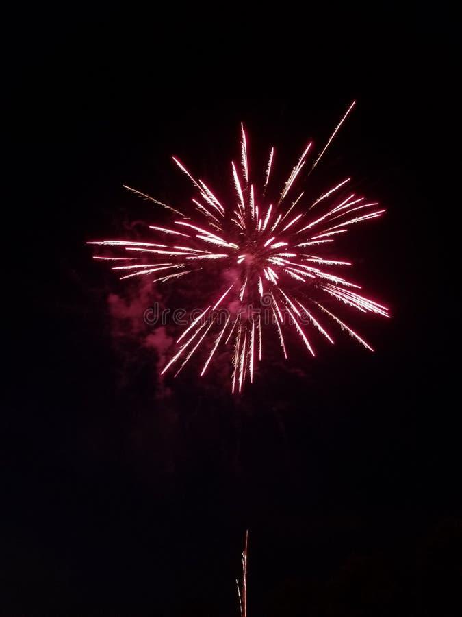 Fuoco d'artificio rosso fotografia stock libera da diritti