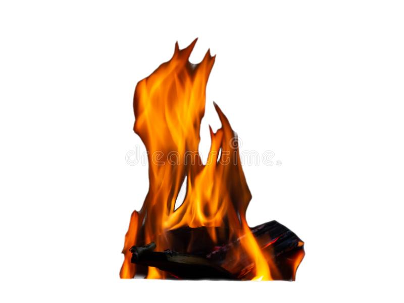 Fuoco della fiamma fatto della fine della legna da ardere su isolata su fondo bianco fotografia stock libera da diritti