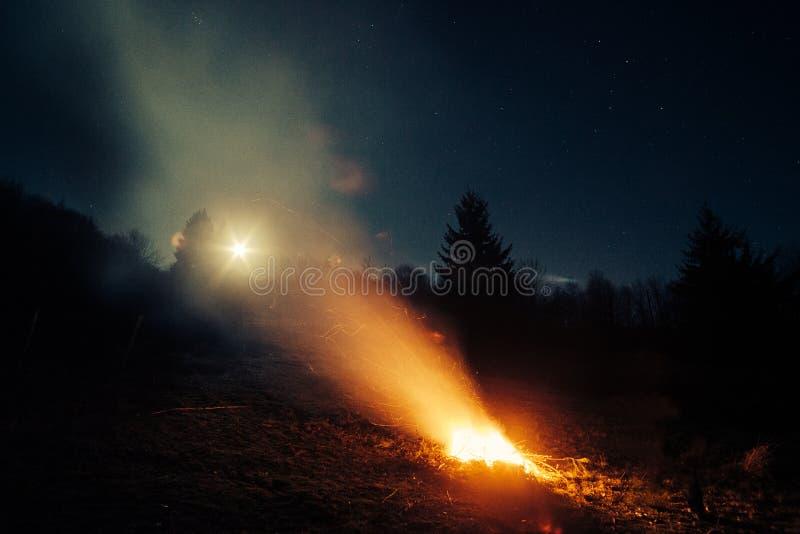 Fuoco di accampamento in legno alla notte immagine stock
