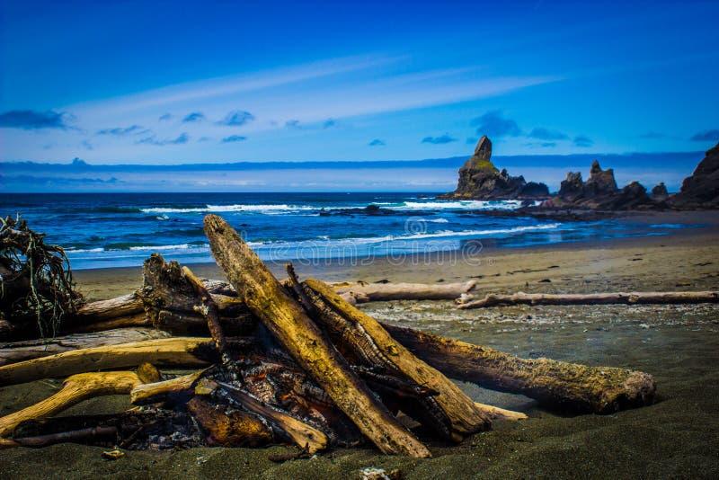 Fuoco di accampamento su Shi Shi Beach con le pile del mare nel fondo fotografia stock