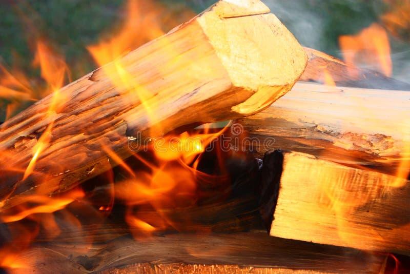Fuoco di legno fotografia stock