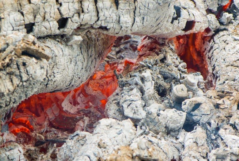 Fuoco e carbone bruciato fotografia stock