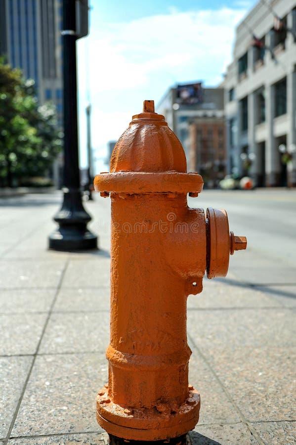 Fuoco Hidrant fotografie stock