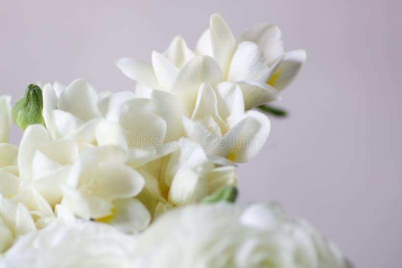 Fuoco molle su un dettaglio del mazzo di nozze con il fresia bianco fotografia stock libera da diritti