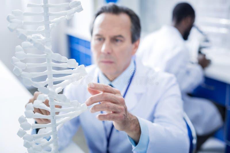 Fuoco selettivo di un modello del DNA immagini stock libere da diritti