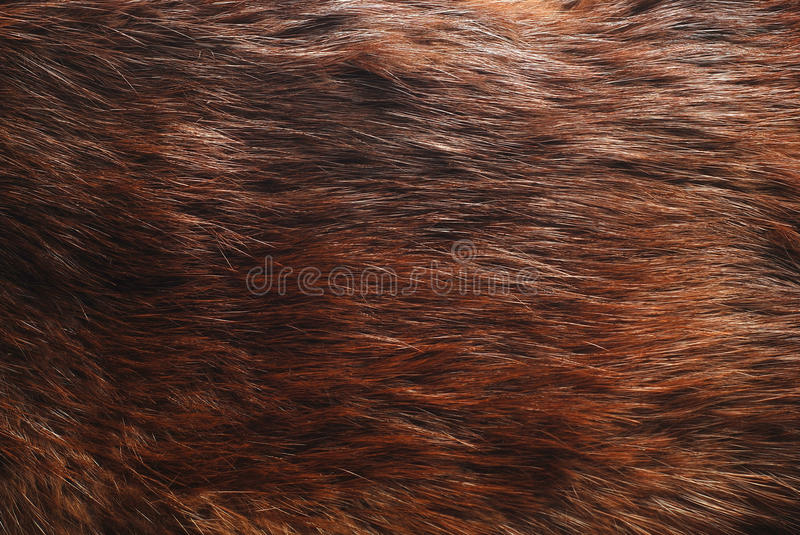 Download Fur stock photo. Image of material, artificial, textile - 25088256