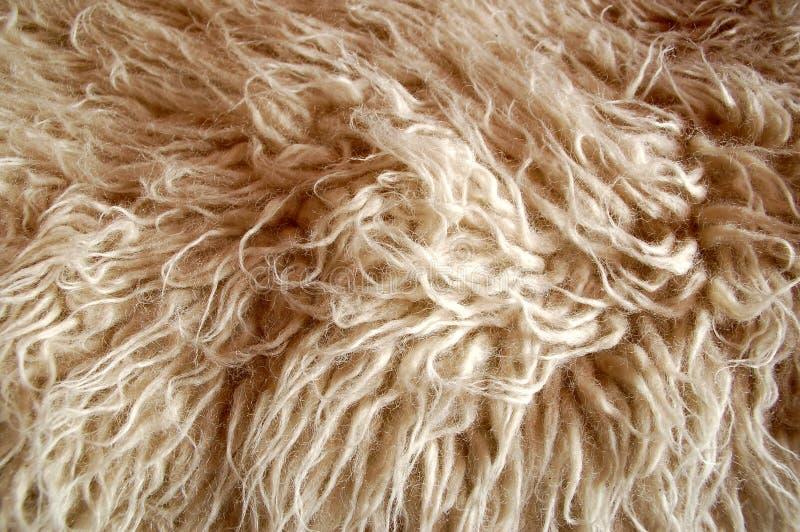 Fur #4. Close-up of white fur royalty free stock image