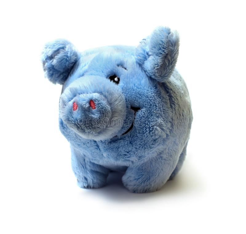 Fur blue pig toy for children isolated on white background stock photography