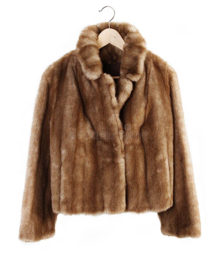 Download Fur coat stock photo. Image of jacket, inside, animal - 38090300