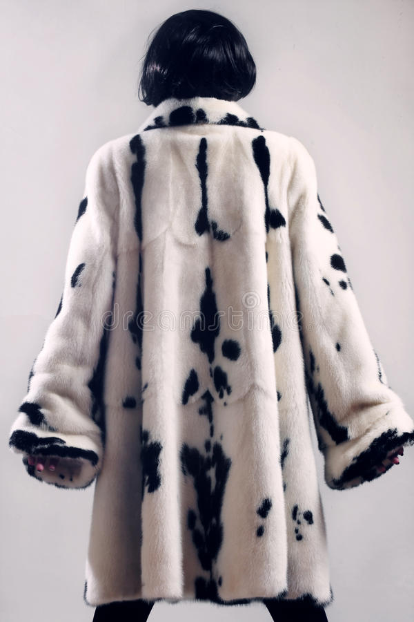Download Fur Coat Winter Clothes Fashion Stock Image - Image: 35994277