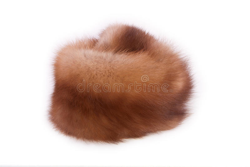 Download Fur Of A Marten Royalty Free Stock Photography - Image: 23330757