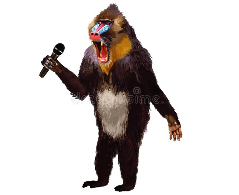 Fur, Old World Monkey, Mandrill, Fictional Character stock photo