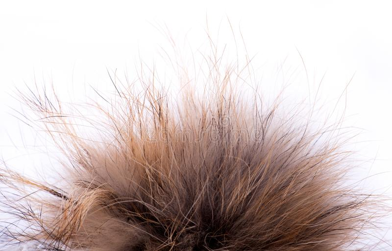 Fur pompom made of natural fur on a white isolated background royalty free stock photos