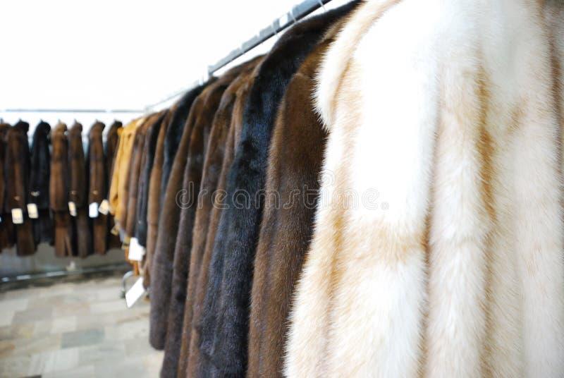 Fur shop stock image