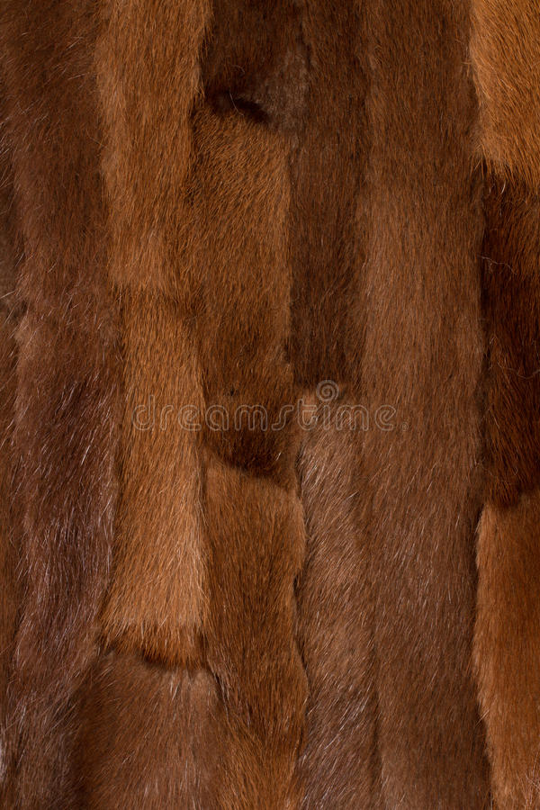 Download Fur texture background stock photo. Image of heat, fuzzy - 43436100